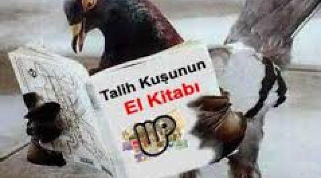 'Talih Kuşu' geçen yıl 1,4 milyar liralık ikramiye dağıttı