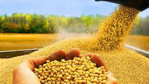 Tarım, Yeni Ekonomi Programında nasıl yer aldı?