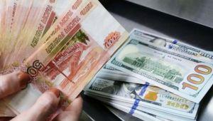 Ulusal para birimi kullanımına destek