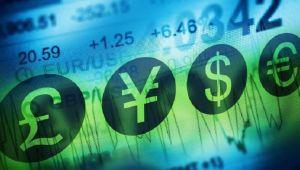 Merkez'in brüt döviz rezervleri 1.6 milyar dolar arttı