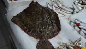 Karadeniz'de avlandı Fiyatı dudak uçuklatıyor!