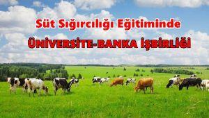 Süt Sığırcılığı Eğitiminde Üniversite-Banka İşbirliği hayata geçti…