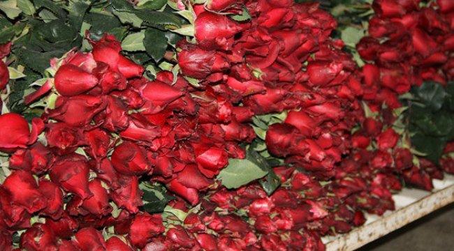 Bir günde 120 bin adet çiçek satıldı
