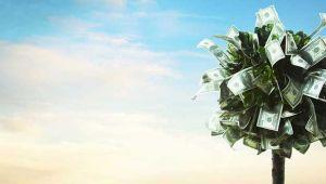 Finansal Yatırım Araçlarının Reel Getiri Oranları, Ocak 2019