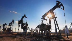 Rusya'nın OPEC ile