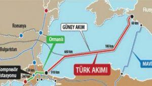 'Türk Akımı, yıl sonuna kadar faaliyete geçecek'