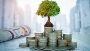 'Emeklilik fonlarından 2.5 milyar lira Hazine'ye borç verilecek'