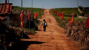 Kuzey Kore son 40 yılın en kötü kuraklığıyla boğuşuyor