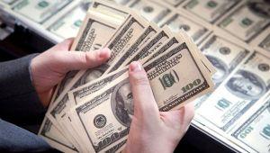 Merkez'in brüt döviz rezervleri 75.8 milyar dolara yükseldi