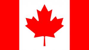 Hastaların MR ve tomografi için aylarca sıra beklemesi, Kanada ekonomisine bir yılda 3,54 milyar Dolara mal oldu