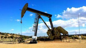 Petrol fiyatları artan tansiyona rağmen sakin kalacak