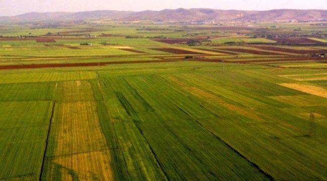 Hazine'ye ait tarım arazilerinin satışına yeni düzenleme