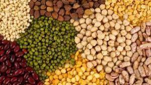 Tarım Ürünleri Üretici Fiyat Endeksi, Eylül 2019