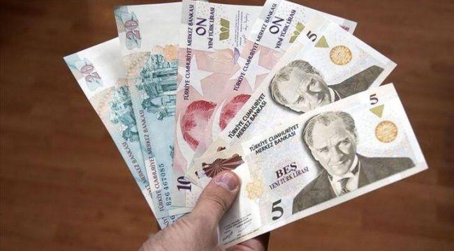 Yeni Türk Lirası banknotların zaman aşımı yıl sonunda dolacak