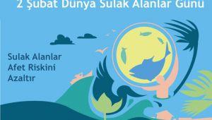 2 Şubat Dünya Sulak Alanlar Günü