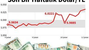Kamu bankaları bir haftada 4,5 milyar dolar sattı