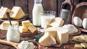 Süt ve Süt Ürünleri Üretimi, Ocak 2020