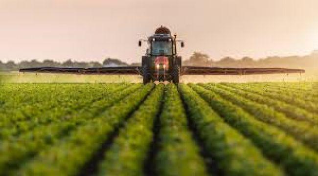 5 ülkeden tarım ve gıda ürünlerine ihracat yasağı