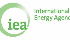 IEA/Birol: 10 milyon varillik üretim kısıntısı istikrar için yeterli değil