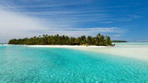 Cook Adaları ekonominin durması pahasına sınırı kapattı, virüs adaya ulaşamadı