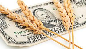Gıda Fiyat Endeksi 17 Aylık Periyodun En Düşük Seviyesine Geriledi