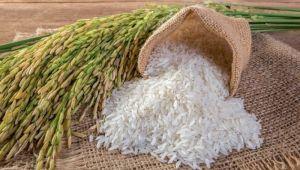 Pirince bir yılda yüzde 40 zam