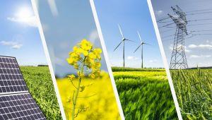 Yenilenebilir enerji sektöründe toparlanma hızlı olacak