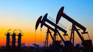 Petrokimya sektöründe daralma