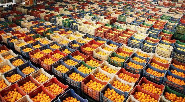 Türk gıda ihracatçıları Körfez'e yöneldi
