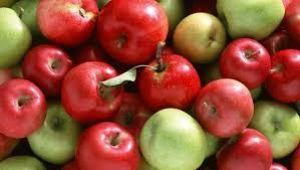 Elmanın kilosu 24 lirayı gördü!