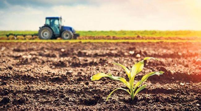 Albayrak: Türk tarımı üreticimizin alın teri ile büyüyor