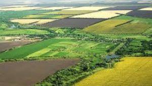 Boş olan Hazine arazileri çiftçilere kiraya verilecek