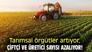 Tarımsal örgütler artıyor faal çiftçi sayısı azalıyor