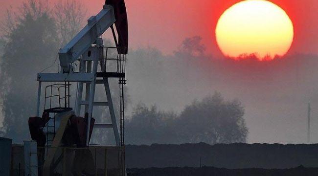 Türk Petrol Kanunu Uygulama Yönetmeliğinde değişiklik yapıldı