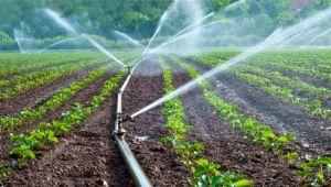 Bütçeden tarım ve sulamaya 57,5 milyar lira kaynak ayrılması öngörüldü