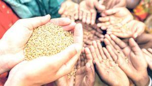 Gıda egemenliği için üretim ekonomisi