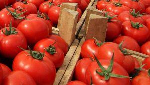 O ülke domates ithalat yasağını kaldırdı