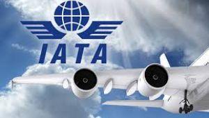 Hava yolu taşımacılığı yüzde 66 daralacak
