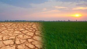 'Kuraklık tarımı vuracak'
