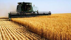 Tarımda Üretici Fiyat Endeksi yükseldi