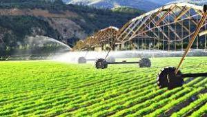 2020 tarımın stratejik önemini yeniden hatırlattı