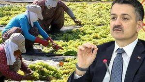 Bakanlığa alınacak 826 tarım işçisi için kura çekimi yapıldı