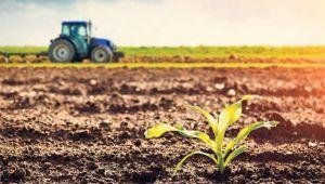 Tarım ÜFE yıllık yüzde 14 oranında arttı