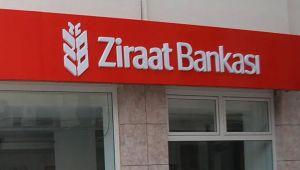 Ziraat Bankası internet sitesinde 874 adet tarlayı satışa çıkardı