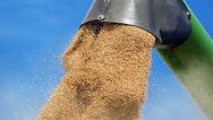 Dünyanın en büyük tahıl ambarı hangi ülkede?