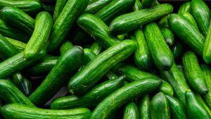 Tarım ve Orman Bakanlığı: Çin'den salatalık ithalatı yapılmamaktadır