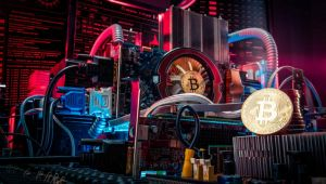 Kripto para medenciliği
