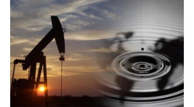 Forex ham petrol analizi