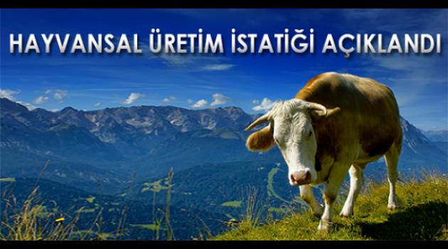 Hayvansal Üretim İstatistikleri, Haziran 2017