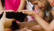 Okullarda çocuklara hayvan sevgisi aşılanabilir mi?